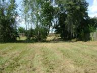 0 Palm View Dr - Lot 12 Mulberry FL, 33860