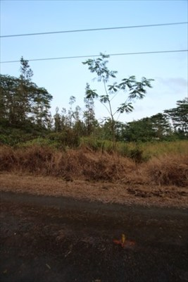 Ginger Ln Lot #: 59 Pahoa HI, 96778