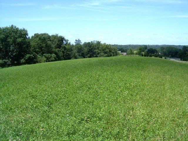 Lot 6 Meyers Road (8.05+- Acres) Mount Carroll IL, 61053