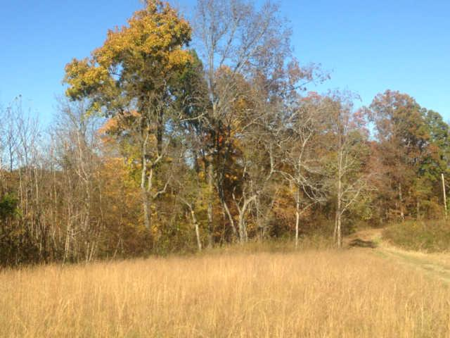 0 Silverado Trails Rd Lynnville TN, 38472
