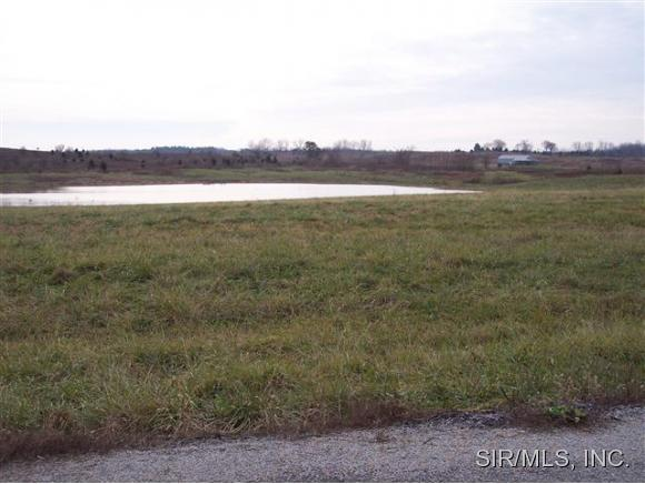 Lot 10 Blue Gill Lane Creal Springs IL, 62922