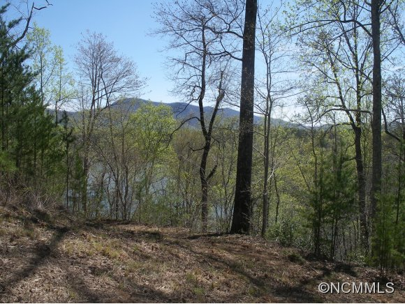 Lot 3 Mountain Parkway Mill Spring NC, 28756