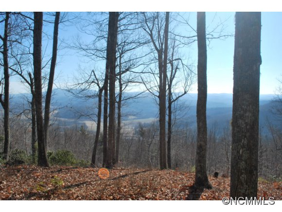 15b Reserve Road Pisgah Forest NC, 28768